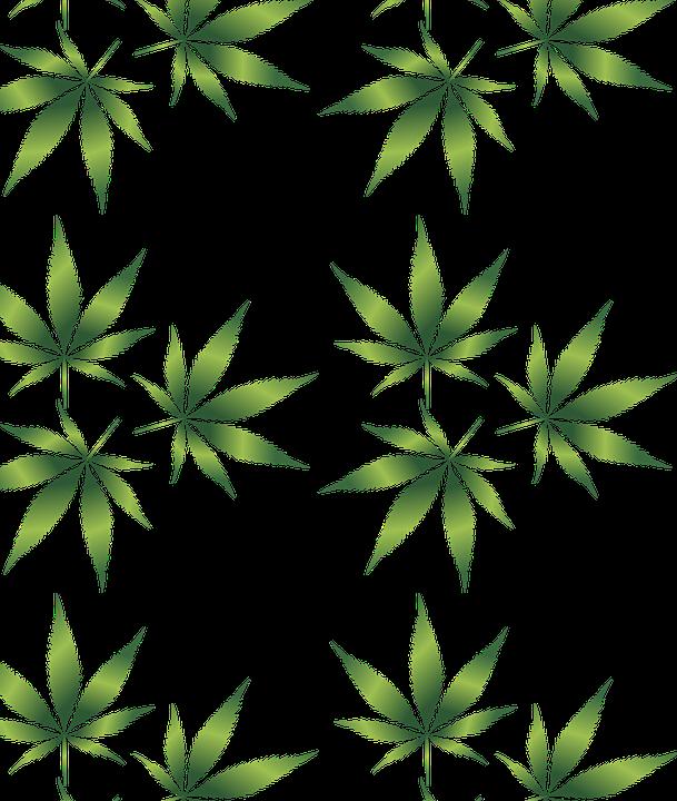 Household Marijuana Growing Might Impact Home Buying/Selling