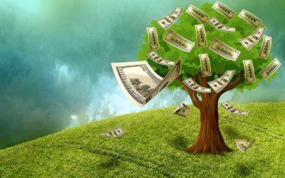 Not a Money Tree